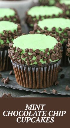 These Mint Chocolate Chip Cupcakes are made with a moist chocolate cupcake, mint frosting and mini chocolate chips! A classic flavor combination in cupcake form! Mint Chocolate Cupcakes, Chocolate Chip Cake, Mint Chocolate Chips, Chocolate Recipes, Chocolate Buttercream, Chocolate Ganache, Cupcake Recipes, Baking Recipes, Cupcake Cakes
