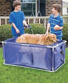 Portable Dog Bath Tub Don't be fooled by this dog's small size (or his adorable looks), portable dog bath tubs come in larger sizes for the big dogs too! They are lightweight and you can bring them anywhere.Portable...