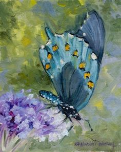 Ever Changing butterfly oil painting from nature -- Kit Hevron Mahoney