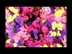부산풀싸롱/연산동풀싸롱《 010-4882-1888》은하팀장∼※ 부산풀살롱