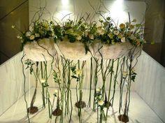 Award-winning international floral art designer Franca Logan's Land of the Long White Cloud display in Malaysia   http://www.ccc.govt.nz/thecouncil/newsmedia/mediareleases/2012/201202162.aspx