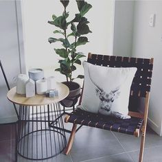 The new woven chair available in stores now $39 (if there's any left) looking great in the house of @house189_ thanks so much for the tag so I could share.  #kmart #kmartaus #kmartaustralia #kmartnz #kmartbargains #kmartbargain #kmarthome #kmarthomewares #kmartstyling #kmartnewfinds #kmartlovers #kmartstyle #newtokmart #newfind #home #newinstore #nowinstock #homedecor #decor #decorating #interiordesign #interiorstyle #interiordecorating #newrange