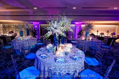 Boca By Design Blue And Purple Lighting Set The Tone For This Underwater Oasis
