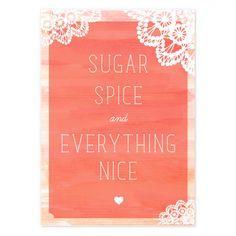 sugar spice and everything nice invite