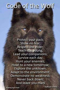 Code of the wolf.some of the reasons for my wolf tattoo Life Quotes Love, Great Quotes, Quotes To Live By, Me Quotes, Motivational Quotes, Inspirational Quotes, Funny Quotes, Respect Quotes, Badass Quotes