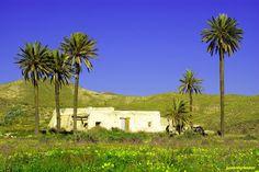 Cortijo de las palmeras en los alrededores de Cala del Plomo, Parque Sobrenatural de Cabo de Gata