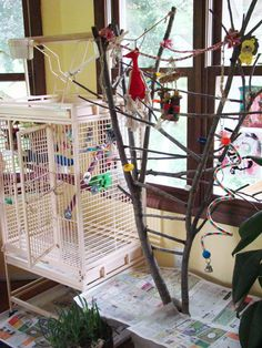 How to make a bird play stand