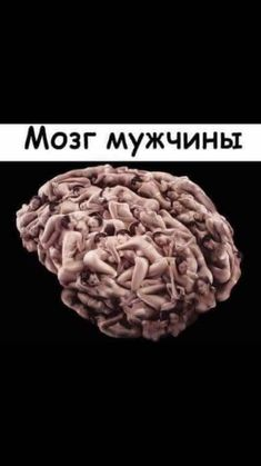 Russian Quotes, Men Vs Women, Pranks, Jokes, Funny, Celebrity, Humor, Guys Vs Girls, Ha Ha