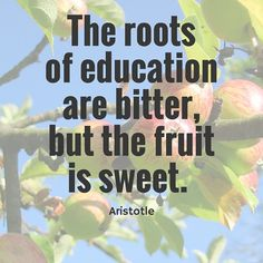 the roots of education are bitter but the fruit is sweet aristotle The roots of education, meaning actually going to school, studying, making great grades, and giving it your best study is bitter but its fruits are sweet essay.