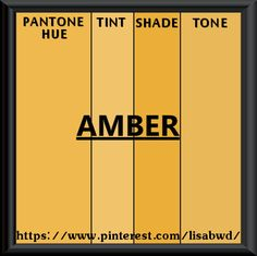 PANTONE SEASONAL COLOR SWATCH AMBER