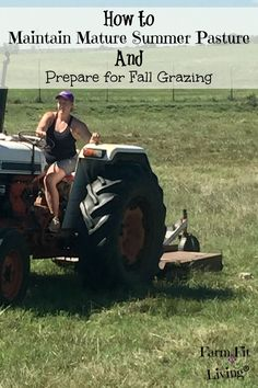 Excellent place to start to determine How to Maintain Mature Summer Pasture to Prepare for Fall Grazing Cattle Farming, Livestock, Beef Farming, Raising Cattle, Raising Goats, Raising Chickens, Raising Farm Animals, Goat Care, Farm Plans
