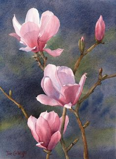 .~Magnolias, Dark Background - WetCanvas~.