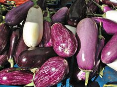 Taking on Middle Eastern Classics: Baba Ganoush Recipe - Green Prophet Easy Vegetables To Grow, Types Of Vegetables, When To Harvest Cucumbers, How To Prepare Eggplant, Growing Sweet Potatoes, Baba Ganoush, Starting Seeds Indoors, Bountiful Harvest, Pickling Cucumbers