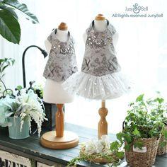 Arnés de lujo Gir vestido  con correa / envío gratis