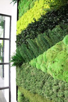 Green wall                                                                                                                                                      Más