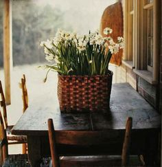 lovely spring flowers in basket