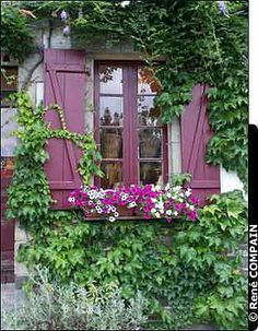 Purple windows, doors, etc...love..any color goes with purple or lavender