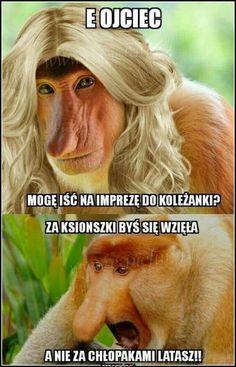 Meme Meme, Best Memes, Einstein, Funny, Lol, Humor, Best Memes Ever, Humour, Ha Ha