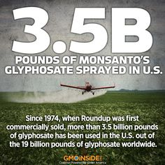 Glyphosate, the main