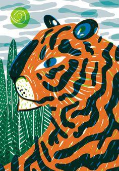tigrinho de olho no sapo tiger                                                                                                                                                                                 Más