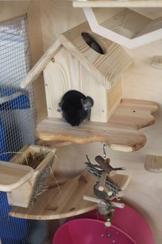 This wooden chinchilla cage from Lenwood is fab. I love how she builds the hideouts and shelves into the cage.