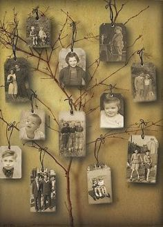 photo tree display--this would be neat for a family reunion/get together