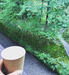 全国名水百選2位の美味しいお水で淹れた珈琲 お水が美味しいのはもちろん空気も緑も驚くあじわい瓜割名水公園オススメ #福井 #グルメ旅 #名水 #瓜割の滝 #ごちそう #simplicity #gocciso #fukui #purewater