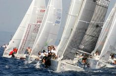 Boat Race in Marbella