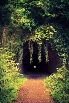 Abandoned railway tunnel, Wales.
