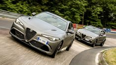 Alfa Romeo Giulia, Stelvio Quadrifoglio NRING Editions come with scale models and jackets