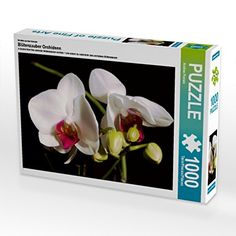 Ein Motiv aus dem Kalender Blütenzauber Orchideen 1000 Te... https://www.amazon.de/dp/B01LNQOUDW/ref=cm_sw_r_pi_dp_x_bYP3xb90Q0AV2