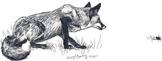 Fox on the Hunt by *silvercrossfox on deviantART, Tutorial_Foxes_by_modesty., How to draw Animals, tutorials for drawing animals, animal anatomy, animal sketches, cute, kawaii, realistic, animals , how to draw a fox, red fox, artic fox, fence fox reference , paw  Sketchbook, art teacher, art lesson, sketches