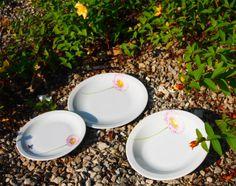 Porzellan im Hinterhof: Gänseblümchen, Löwenzahn, Pusteblume, Ringelblume gibt es hier für Kindergärten Horte Schulen auf besonders schlagfesten Gastronomieporzellan.