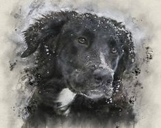 xartkaran by XArtPhotoExtreme Dog Art, Best Dogs, Portraits, Paintings, Artwork, Animals, Etsy, Vintage, Amazing
