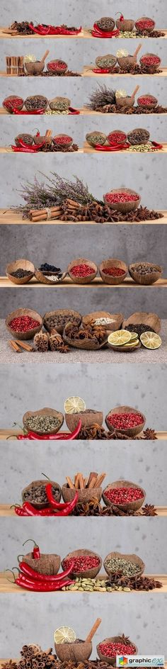 Spices 2  stock images
