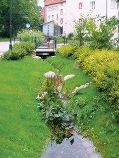 Ditches can be integrated into green verges or the roadside. They look natural but do need extra space and maintenance. Click on this link http://www.urbangreenbluegrids.com/measures/ for more green streetscaping via Atelier GroenBlauw and visit the slowottawa.ca boards:  http://www.pinterest.com/slowottawa/