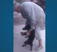 """""""O Grito do Bicho"""": Homem é flagrado por vizinho espancando cachorro e..."""