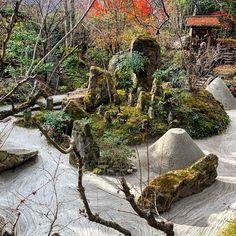 Bild könnte enthalten: Pflanze, Baum, im Freien, Natur und Wasser Zen Rock Garden, Outdoor, Tree Structure, Water, Plants