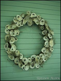 9From the Uptown Acorn  Great way to display all our oyster shells from Jersey beaches over the years