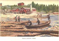 Kajana - Kajaani, 1908 -  Alexander Federley's (1864–1932) picture of floating timber in Ämmäkoski rapids, Kajaani, Finland 1908. - Alexander Federleyn kuva puunuitosta Ämmäkoskessa Kajaanissa 1908.