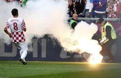 steward euro 2012