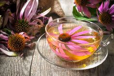 Reasons Why You Should Drink Echinacea Tea Every DayThanks for this post.Echinacea Tea One way to reap the many benefits of echinacea is to enjoy a cup of warm tea. Echinacea tea (which may contain one or more varieties of the he# Day Home Remedies For Acne, Acne Remedies, Natural Home Remedies, Cellulite Remedies, Herbal Remedies, Beauty Tips For Men, Tea Benefits, Health Benefits, Natural Remedies