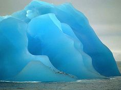 Photographer captures stunning blue iceberg with penguins on it.