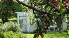 My green house <3