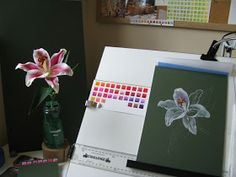 Botanical Sketches and Other Stories: Stargazer Lily in Gouache Lilies Drawing, Stargazer, Gouache, Sketches, Lily, Drawings, Frame, Decor, Picture Frame