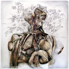 Nunzio Paci's Anatomical Art Explores The Relationship Between Man And Nature http://designwrld.com/nunzio-pacis-anatomical-art/