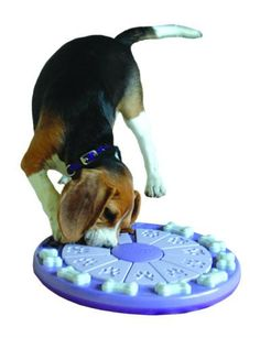 Nina Ottosson Dog Twister - Fun dog puzzle is challenging and a fun way to earn treats! Great way for owner and dog to bond and spend time together. Available from ActiveDogToys.com
