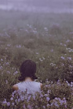 fields of purple flowers//