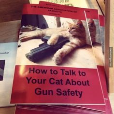 Exactly the book I've been looking for. My cat is out of hand