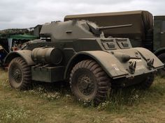 Staghound @ war and peace